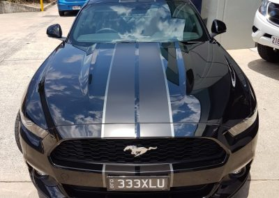 Mustang stripes - black and grey GT stripes (4) (Medium)