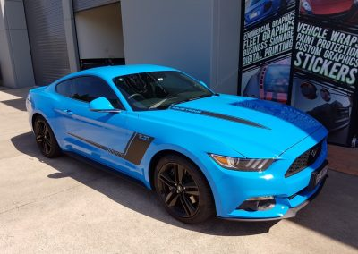 Mustang stripes - blue and black (4) (Medium)